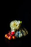 Орнаментальная тыква, красные ягоды и цветя капуста Стоковые Изображения RF