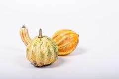 орнаментальная тыква Стоковая Фотография RF