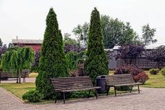 Орнаментальные деревья около коричневых стендов в лете паркуют Стоковые Изображения RF