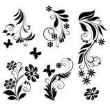 Орнаментальные элементы дизайна - вектор Стоковое Фото