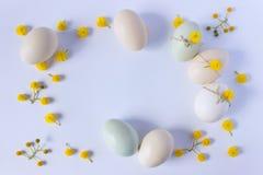 Орнаментированные пасхальные яйца предпосылка красит желтый цвет праздника красный 2 всех пасхального яйца принципиальной схемы ц Стоковое Изображение RF