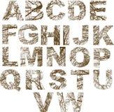 Орнаментированные письма Стоковая Фотография RF