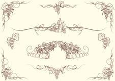 Орнаменты виноградины Стоковое фото RF