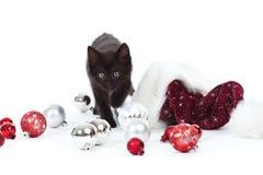 орнаменты котенка шлема рождества шарика черные Стоковые Изображения