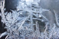 Орнаменты на замороженном окне напоминающем заводов Стоковые Изображения