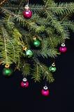 Орнаменты рождества и ветви сосны на черной предпосылке Фиолетовые и зеленые шарики рождества на зеленом цвете украшают ветвь год Стоковое Изображение RF