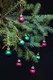 Орнаменты рождества и ветви сосны на черной предпосылке Фиолетовые и зеленые шарики рождества на зеленом цвете украшают ветвь год Стоковые Фото