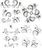 орнаменты собрания флористические Стоковые Изображения RF