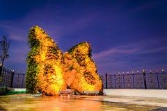 Орнамент бабочки на центровочном угольнике городка Cinarcik Стоковое Фото
