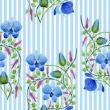 Орнамент голубых цветков Флористический ботанический цветок Безшовная картина предпосылки Стоковое Изображение RF