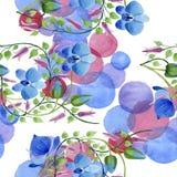 Орнамент голубых цветков Флористический ботанический цветок Безшовная картина предпосылки Стоковая Фотография