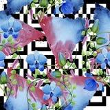 Орнамент голубых цветков Флористический ботанический цветок Безшовная картина предпосылки Стоковые Фото