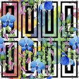 Орнамент голубых цветков Флористический ботанический цветок Безшовная картина предпосылки Стоковое фото RF