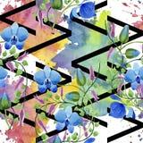 Орнамент голубых цветков Флористический ботанический цветок Безшовная картина предпосылки Стоковые Фотографии RF