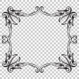 Орнамент изолята в стиле барокко Стоковое Изображение RF