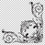 Орнамент изолята угловой Стоковые Изображения