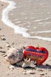 Орнамент и раковины рождества на пляже стоковая фотография rf