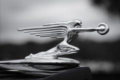 Орнамент клобука на античном автомобиле Packard Стоковые Изображения RF