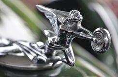Орнамент клобука от Packard Стоковая Фотография