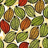 орнамент листва безшовный Стоковая Фотография RF