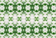 Орнамент листьев зеленого цвета в льде Стоковая Фотография
