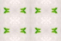 Орнамент листьев зеленого цвета в льде Стоковые Фотографии RF