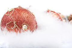 орнамент пера рождества Стоковые Фотографии RF