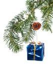 орнамент рождества ветви вися Стоковая Фотография