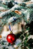 орнамент рождества Стоковые Фото