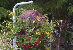 Орнамент сада цветка клетки птицы Стоковые Изображения