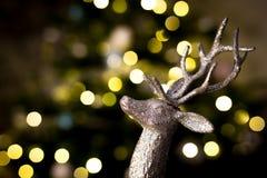 Орнамент северного оленя рождества Стоковое фото RF