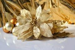 Орнамент украшения рождественской елки   магнолия Стоковые Фото