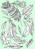 Орнамент фантазии пер птицы много изолированных красивых Стоковые Фото