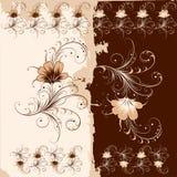 орнамент цветка Стоковые Изображения