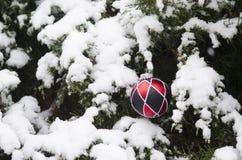 Орнамент шарика рождества в зимнем времени Стоковые Изображения
