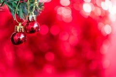 Орнамент шарика рождества украшает на ели Стоковые Изображения