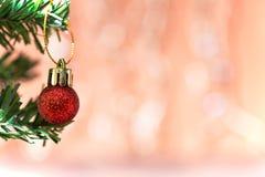 Орнамент шарика рождества украшает на хворостине ели Стоковое Фото