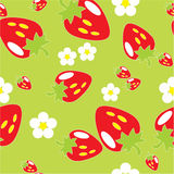 орнамент 09 цветов безшовный Стоковая Фотография RF