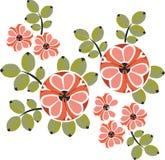 орнамент 12 цветов бесплатная иллюстрация