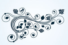 Орнамент curlyl флоры вектора Стоковое Изображение RF