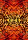 Орнамент Filigrane флористический с формой мандалы на космическом backgrond, коллаже компьютера Влияние огня Стоковое Фото