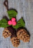 Орнамент Xmas, связанное pinecone рождества Стоковое Изображение