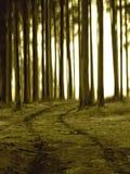 дорога безграничности к Стоковое Изображение