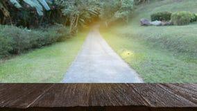 дорога во времени леса весной & x28; image& x29 нерезкости; с выбранным foc стоковое фото