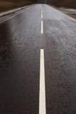 дорога влажная Стоковое Изображение