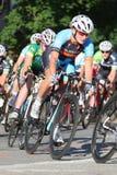дорога гонки пущи велосипедиста bike Стоковое Изображение RF
