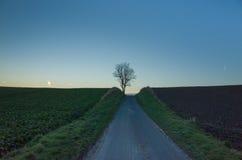 дорога Дании Стоковое Изображение RF