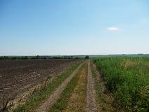 дорога поля к Стоковое Изображение RF