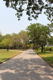 дорога сада Стоковая Фотография