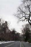дорога Central Park Стоковое Изображение RF